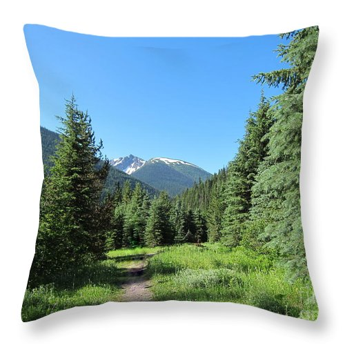 Lightning Lake Throw Pillow featuring the photograph On The Trail Around Lightning Lake by Lena Photo Art