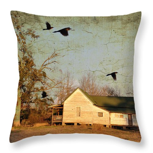Landscapes Throw Pillow featuring the photograph One Day It Will Be Gone by Jan Amiss Photography