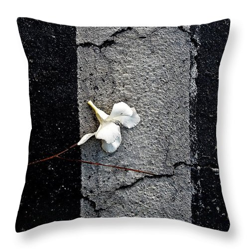 Abstract Throw Pillow featuring the photograph One by Fei A