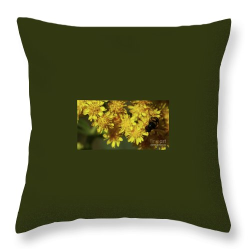 Flower Throw Pillow featuring the photograph One Last Kiss by Linda Shafer