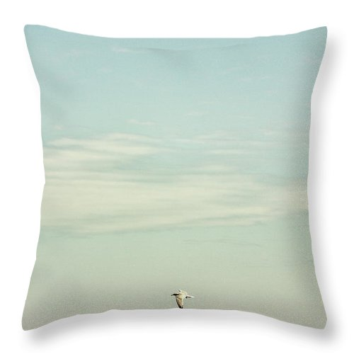 Water Throw Pillow featuring the photograph Only by Margie Hurwich