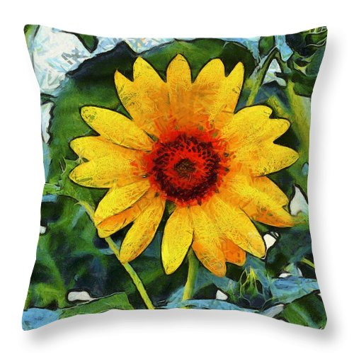 Barbara Snyder Throw Pillow featuring the photograph Onyx Store Sunflower by Barbara Snyder