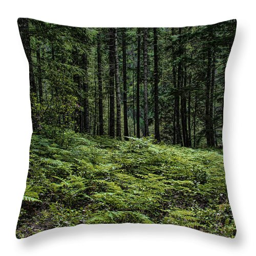 Trees Throw Pillow featuring the photograph Opal Creek Wilderness by Erika Fawcett