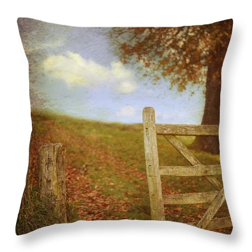 Open Throw Pillow featuring the photograph Open Country Gate by Amanda Elwell