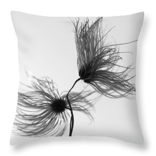 Flowers Throw Pillow featuring the photograph Opposites Obstruct by The Artist Project