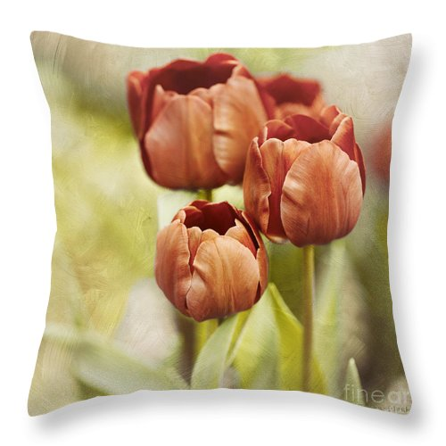 Bloom Throw Pillow featuring the photograph Opposites by Beve Brown-Clark Photography