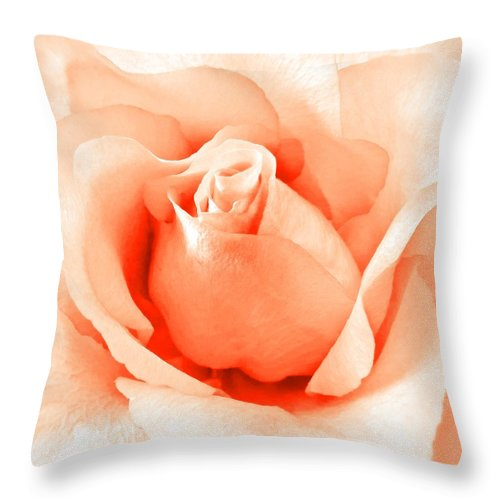 Rose Throw Pillow featuring the photograph Orange Blossom by Angie Mahoney