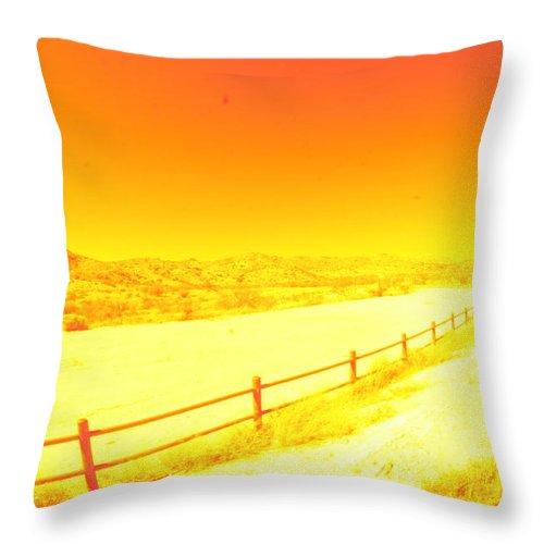 Arizona Throw Pillow featuring the photograph Orange by David S Reynolds