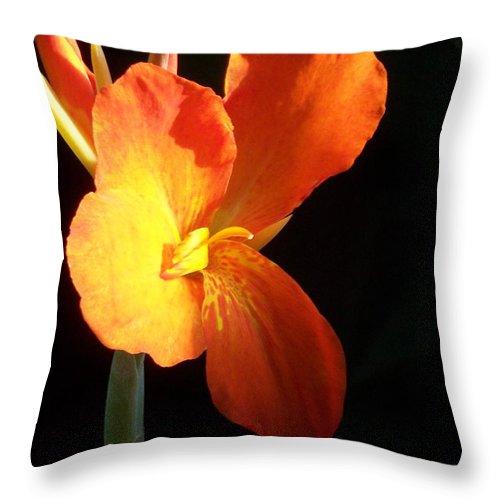 Garden Throw Pillow featuring the photograph Orange Flower Canna by Eric Schiabor