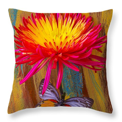 Red Yellow Spider Throw Pillow featuring the photograph Orange Gray Butterfly On Mum by Garry Gay