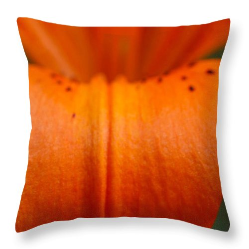 Flower Throw Pillow featuring the photograph Orange Lily by Carol Lynch