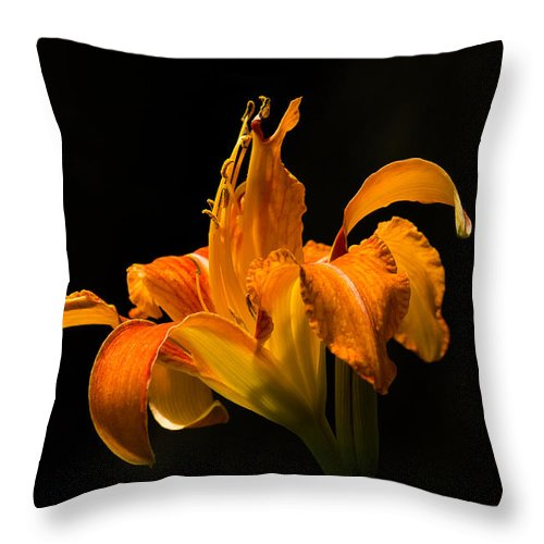 Lily Throw Pillow featuring the photograph Orange On Black by Penny Meyers