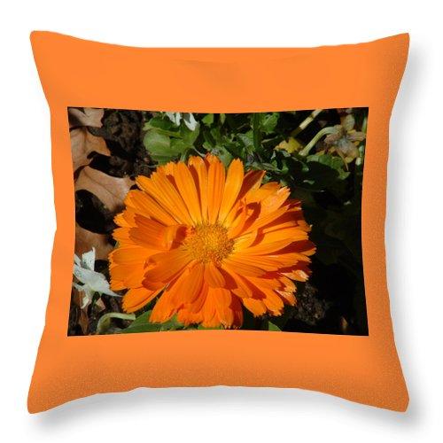 Flower Throw Pillow featuring the photograph Orange Ruffles by Lorna Hooper