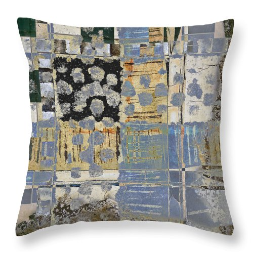 Carol Leigh Throw Pillow featuring the photograph Orchards And Farms Number 1 by Carol Leigh