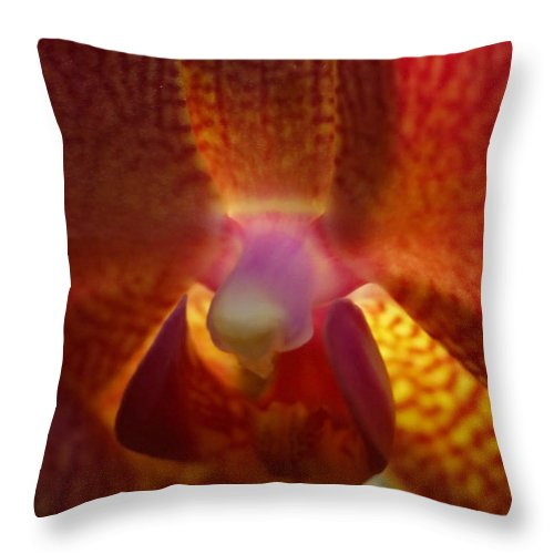 Plant Throw Pillow featuring the photograph Orchid 143 by Rudi Prott
