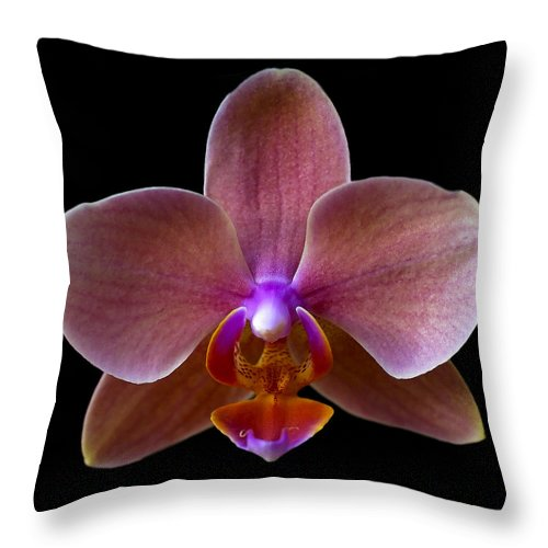 Orchid Throw Pillow featuring the photograph Orchid 17 by Ingrid Smith-Johnsen
