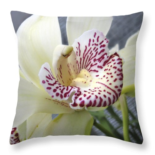 Orchid Throw Pillow featuring the photograph Orchid by Ann Powell