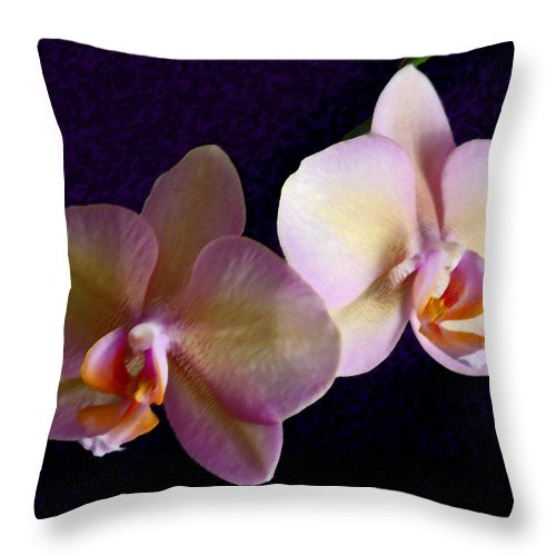 Orchid Throw Pillow featuring the photograph Orchid Light by Steve Karol