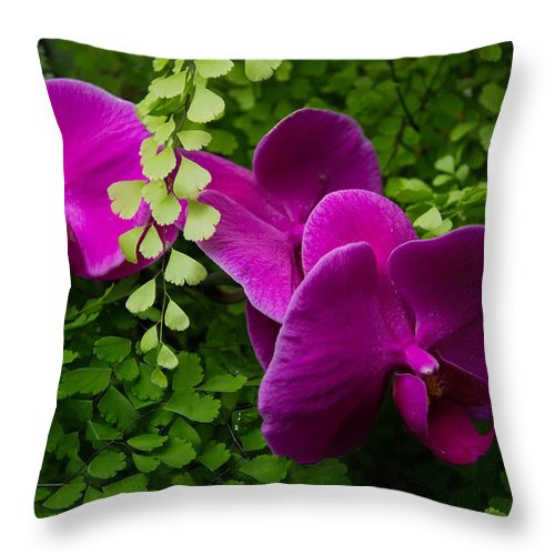 Orchids Throw Pillow featuring the photograph Orchids And Baby Tears by Roger Mullenhour