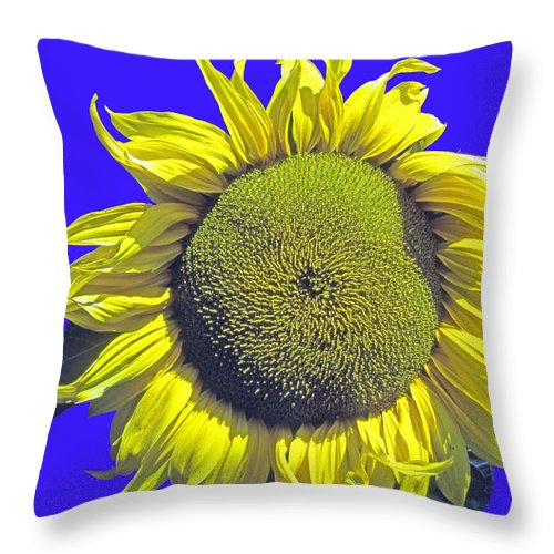Oregon Throw Pillow featuring the photograph Oregon II by Michael Moore