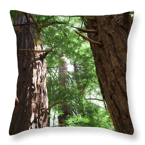 Giant Throw Pillow featuring the photograph Threatened Oregon Sequioa by Brenda Kean