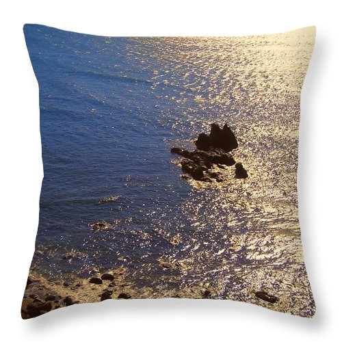 oregon Coast Sunsets Throw Pillow featuring the photograph Oregon State Pacific Coast by Daniel Hagerman