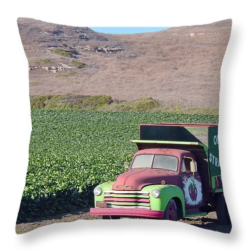 Organic Strawberries Throw Pillow featuring the photograph Organic Strawberries by Suzanne Gaff