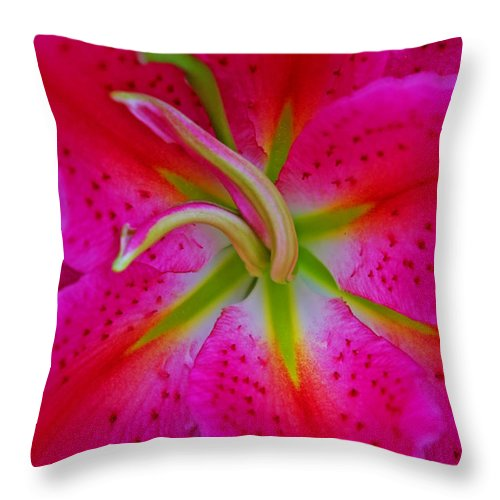 Oriental Lily Throw Pillow featuring the photograph Oriental Lily Stamen by Rich Walter