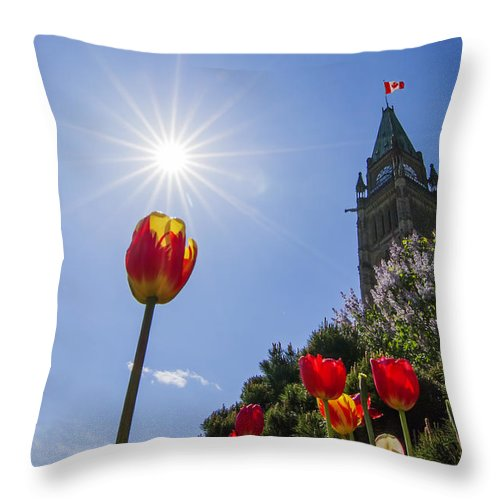 Ottawa Throw Pillow featuring the photograph Ottawa Tulip Festival by Mircea Costina Photography