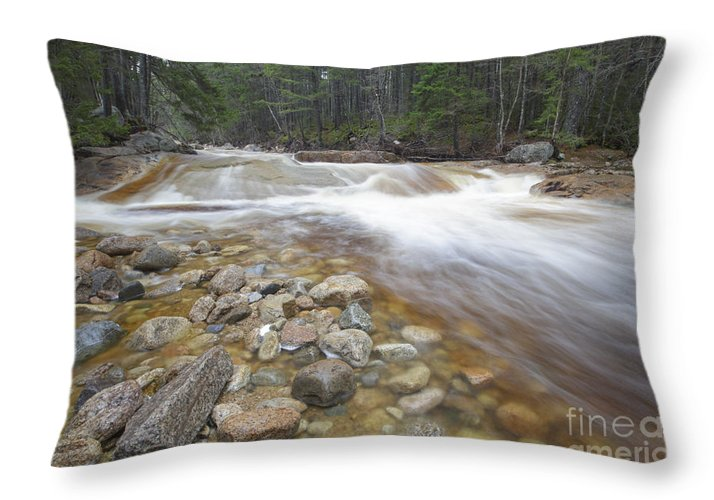 White Mountain National Forest Throw Pillow featuring the photograph Otter Rocks - White Mountains New Hampshire Usa by Erin Paul Donovan