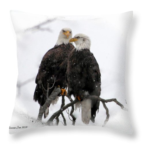Bald Eagles Throw Pillow featuring the photograph Our Time by Rennae Christman