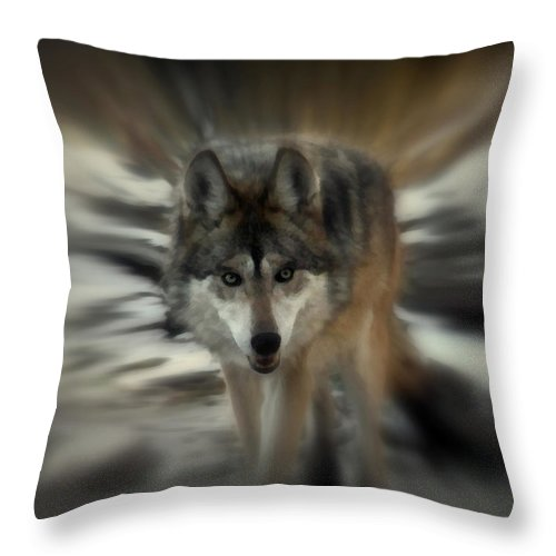 Wolf Throw Pillow featuring the photograph Out Of Nowhere 2 by Ernie Echols