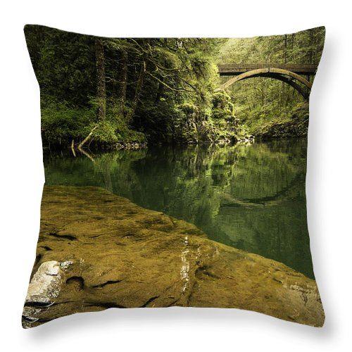 Fern Throw Pillow featuring the photograph Outer Banks by Wasim Muklashy