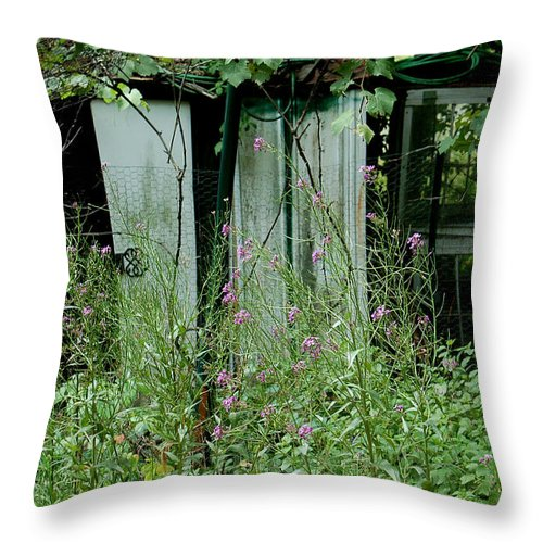 Rural Throw Pillow featuring the photograph Overgrown by Suzanne Gaff