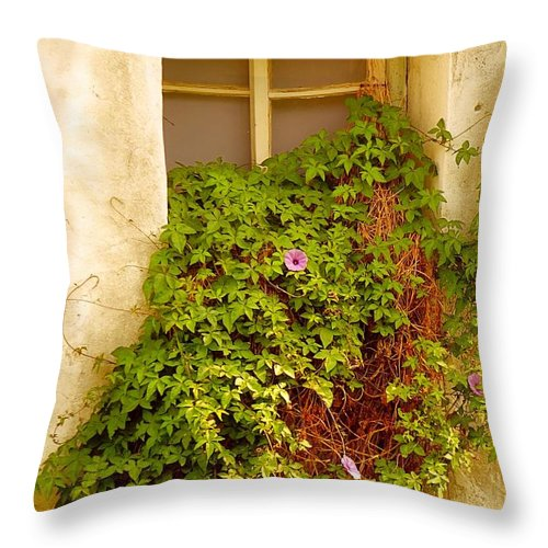 Window Throw Pillow featuring the photograph Overgrown Window Of Old Building by Yali Shi
