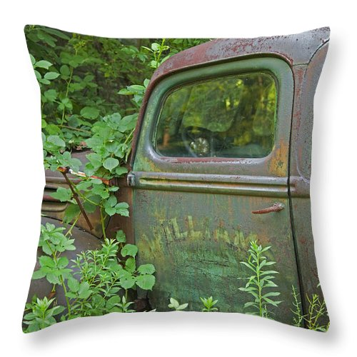 Rustbuckets Throw Pillow featuring the photograph Overtaken by John Stephens