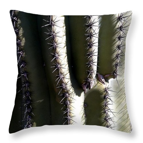 Cacti Throw Pillow featuring the photograph Owie 10 by Marlene Burns