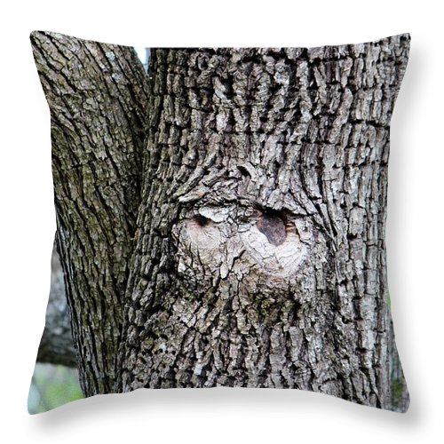 Tree Throw Pillow featuring the photograph Owl Face by Cynthia Guinn