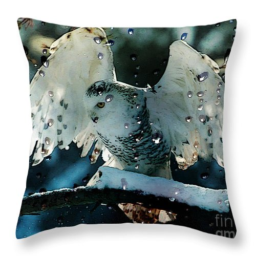 Owl Mixed Media Throw Pillow featuring the mixed media Owl In Snow by Marvin Blaine