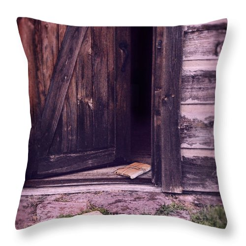 Cabin Throw Pillow featuring the photograph Package By Open Front Door by Jill Battaglia