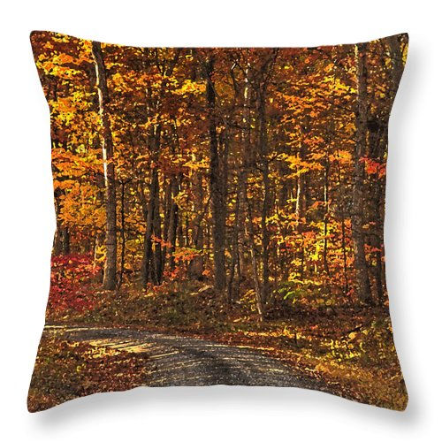 Autumn Throw Pillow featuring the photograph Painted Autumn Country Roads by Lara Ellis