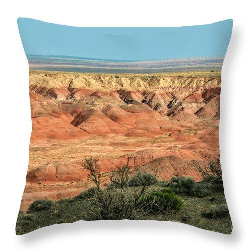 Painted Desert Throw Pillow featuring the photograph Painted Desert by Suzanne Luft