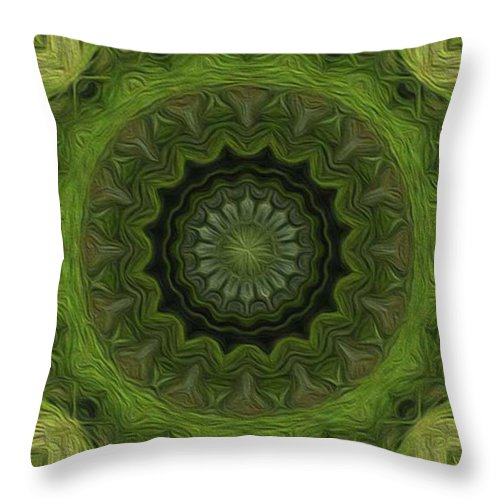 Kaleidoscope Throw Pillow featuring the digital art Painted Kaleidoscope 8 by Rhonda Barrett