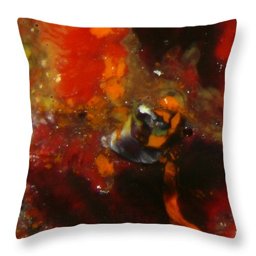 Ice-painting Throw Pillow featuring the photograph Painted Man by Chris Sotiriadis