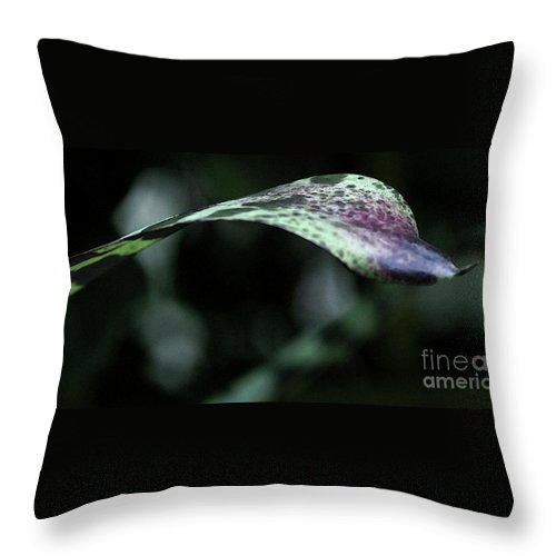 Leaf Throw Pillow featuring the photograph Painted Shades Of Green - 3 by Linda Shafer