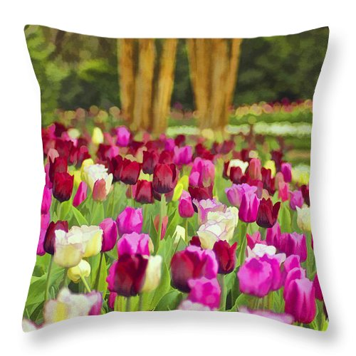 Nature Throw Pillow featuring the photograph Painted Tulips by Darren Fisher