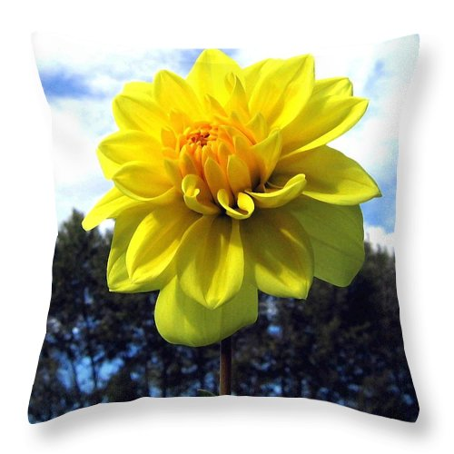 Painted Yellow Dahlia Throw Pillow featuring the digital art Painted Yellow Dahlia by Will Borden