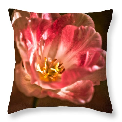 Beauty In Nature Throw Pillow featuring the photograph Painterly by Venetta Archer