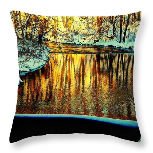 Photo Throw Pillow featuring the photograph Painter's Box by Tami Quigley