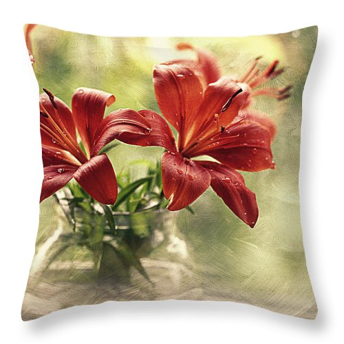 Water Drops Throw Pillow featuring the photograph Painting Daylilies On My Window by Maria Angelica Maira